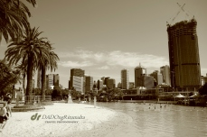 South Bank Brisbane
